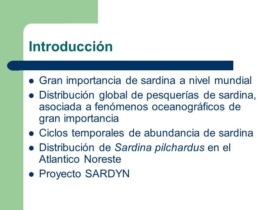 Introducción Gran importancia de sardina a nivel mundial