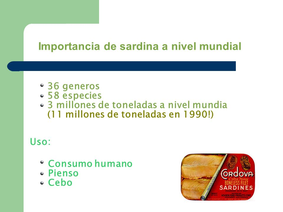 Importancia de sardina a nivel mundial