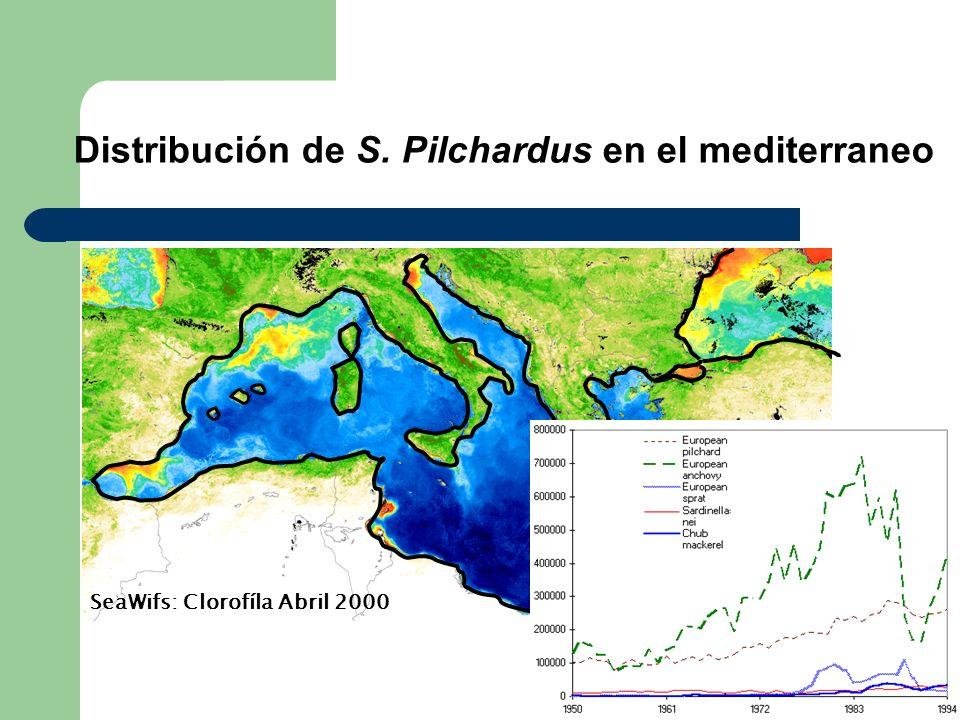 Distribución de S. Pilchardus en el mediterraneo