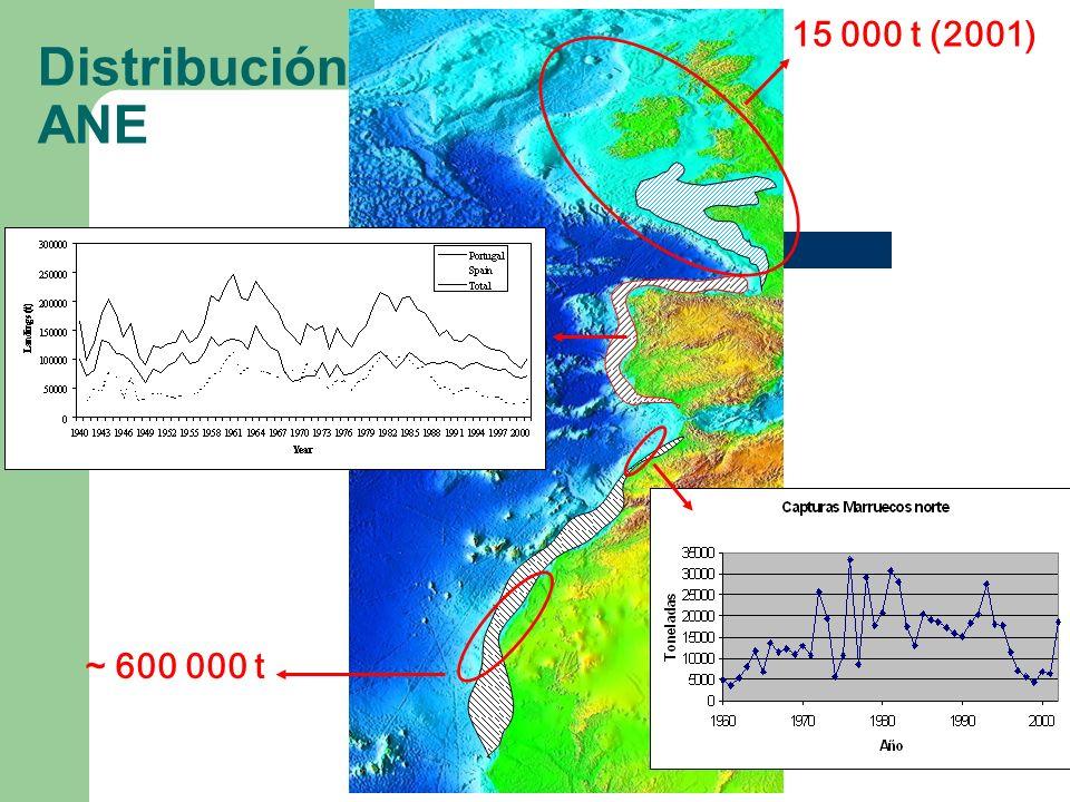 Distribución ANE 15 000 t (2001) ~ 600 000 t