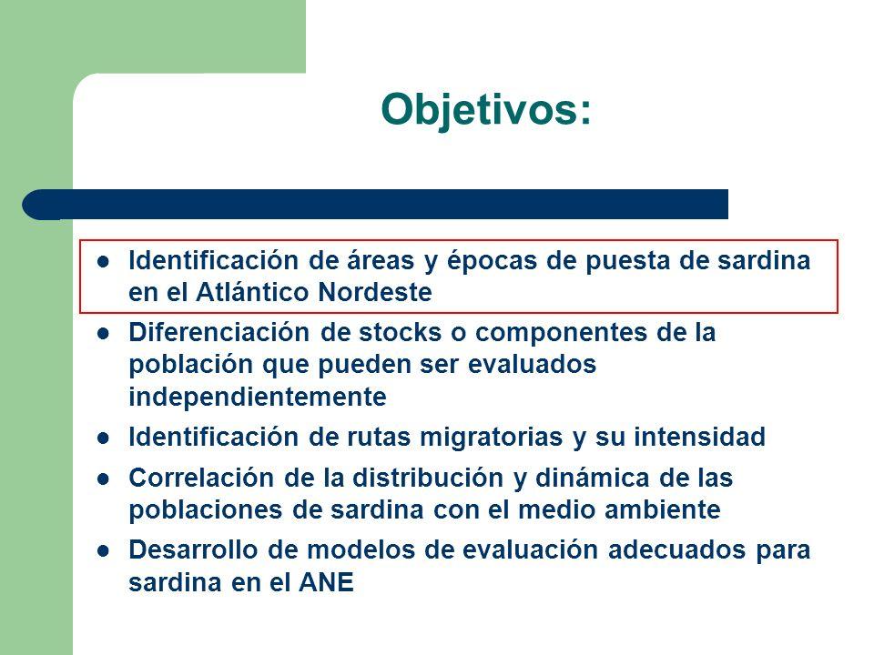 Objetivos: Identificación de áreas y épocas de puesta de sardina en el Atlántico Nordeste.