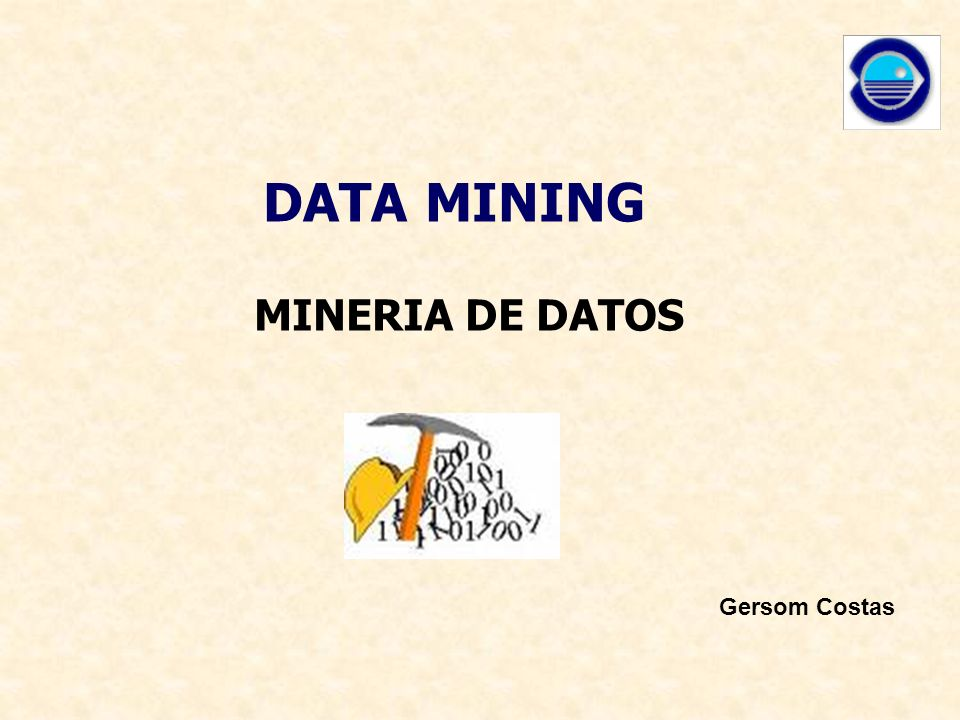 DATA MINING MINERIA DE DATOS Gersom Costas