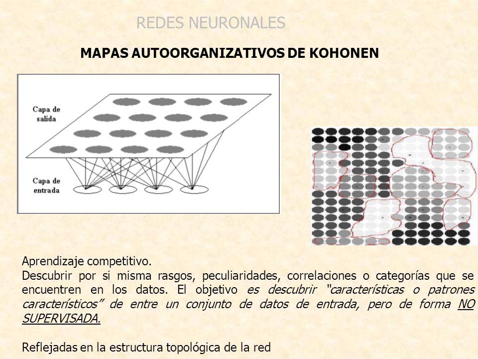 MAPAS AUTOORGANIZATIVOS DE KOHONEN