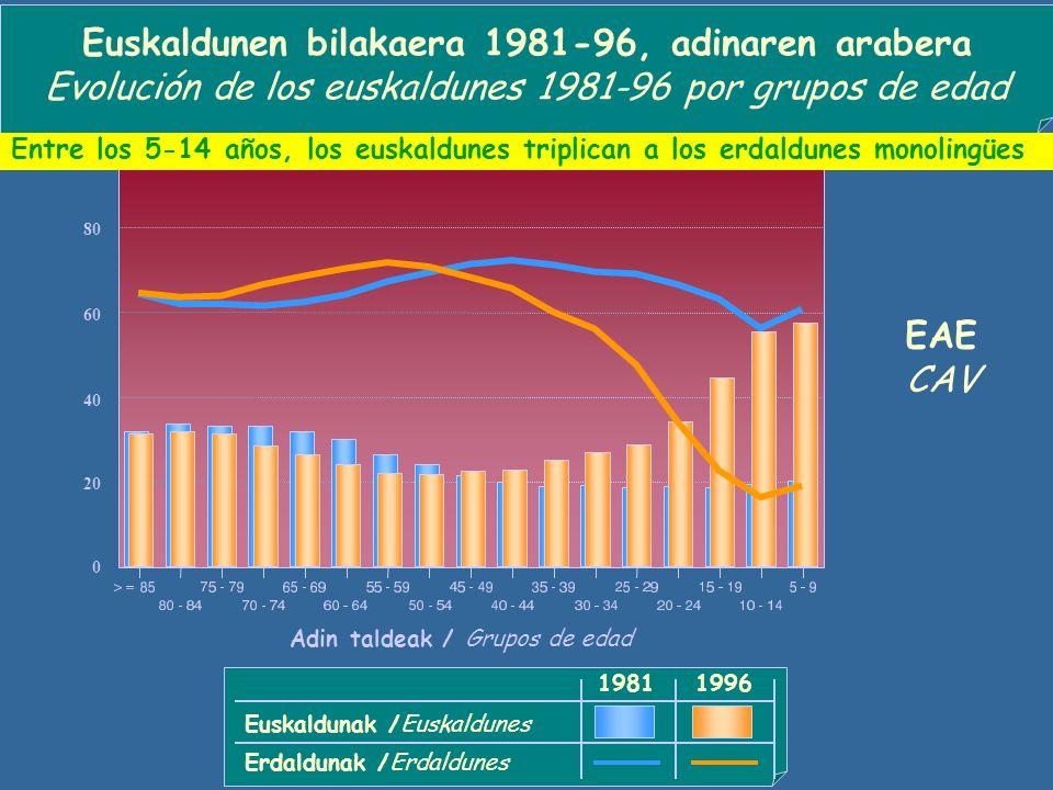 Euskaldunen bilakaera 1981-96, adinaren arabera