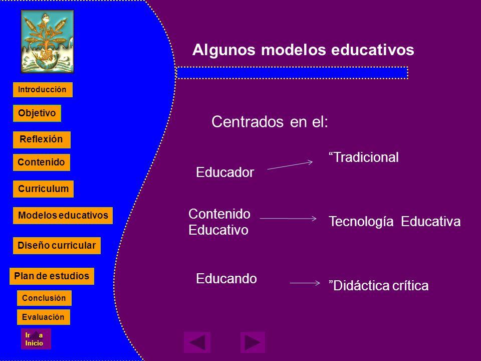 Algunos modelos educativos