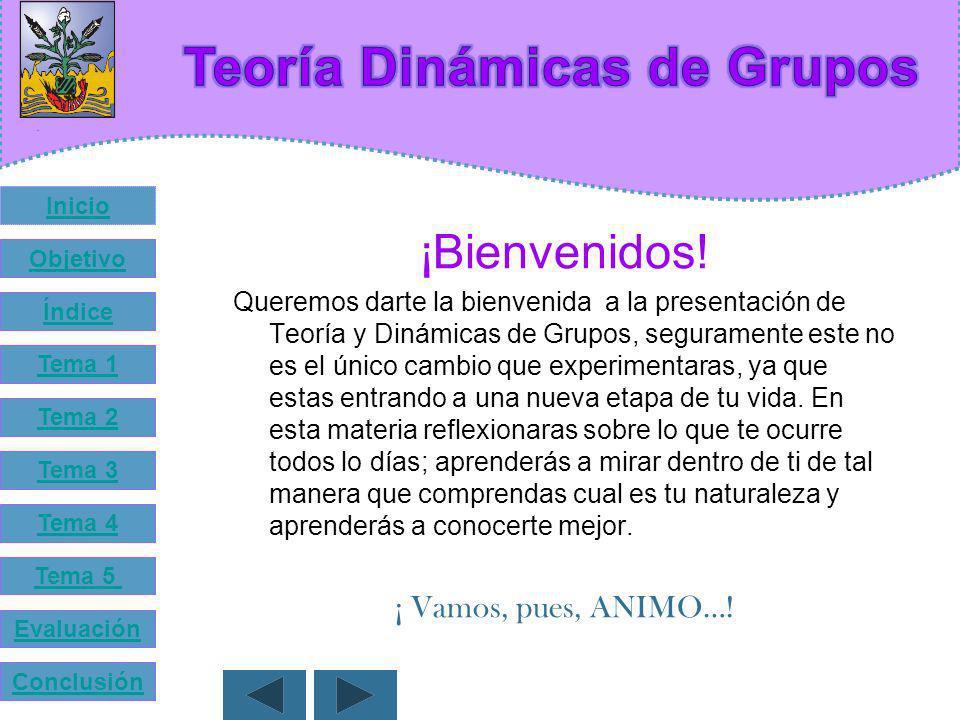 Teoría Dinámicas de Grupos