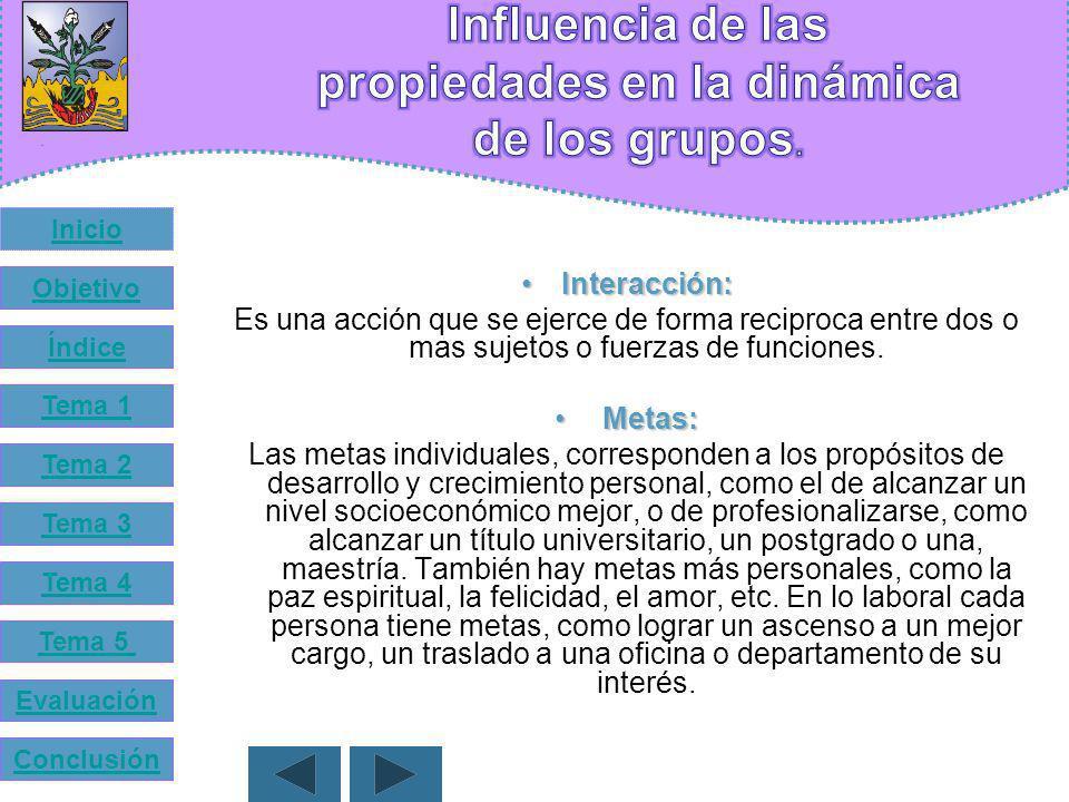 Influencia de las propiedades en la dinámica de los grupos.
