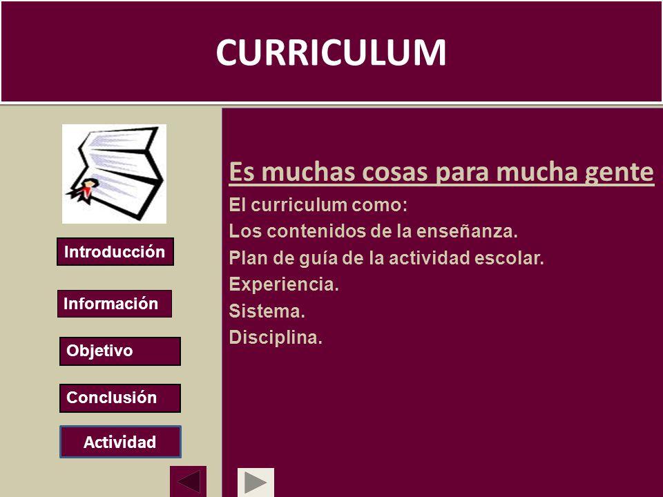 CURRICULUM Es muchas cosas para mucha gente El curriculum como: