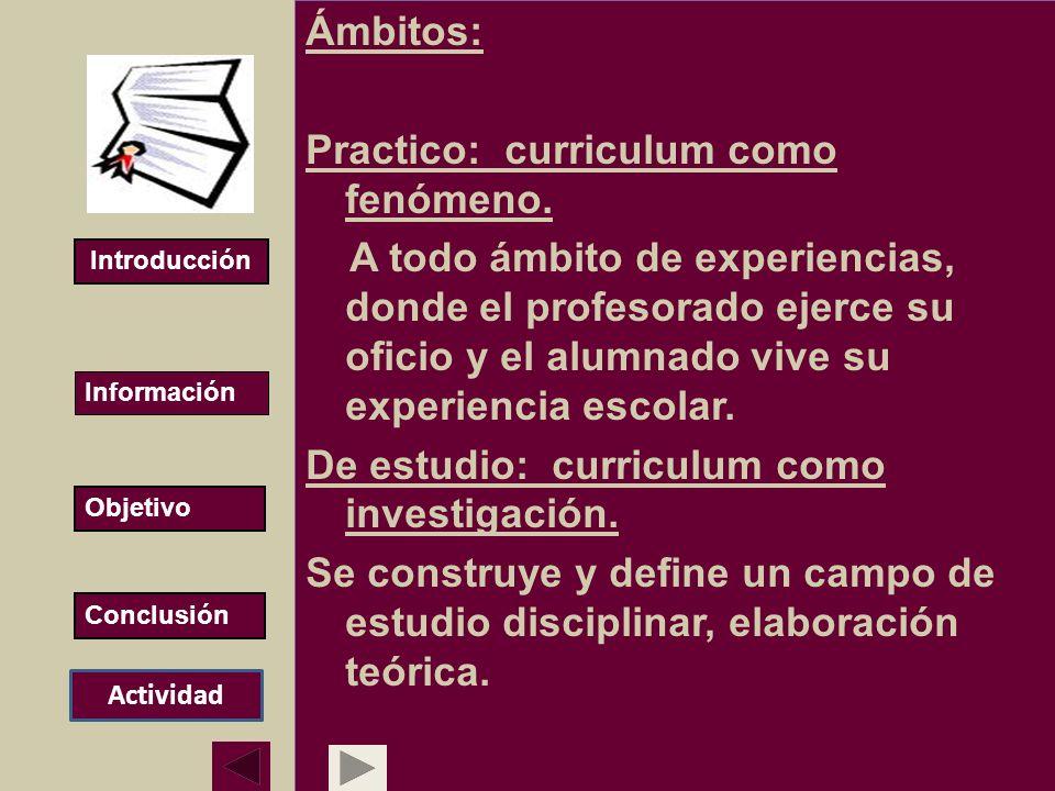 Ámbitos: Practico: curriculum como fenómeno