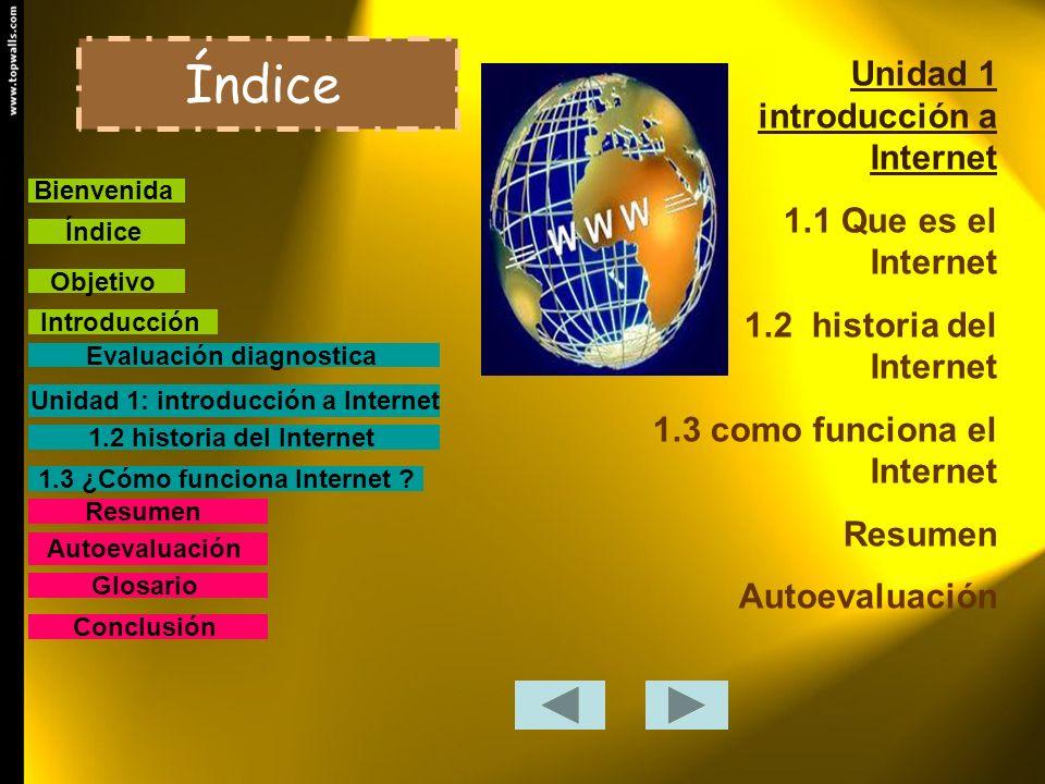 Unidad 1: introducción a Internet 1.3 ¿Cómo funciona Internet