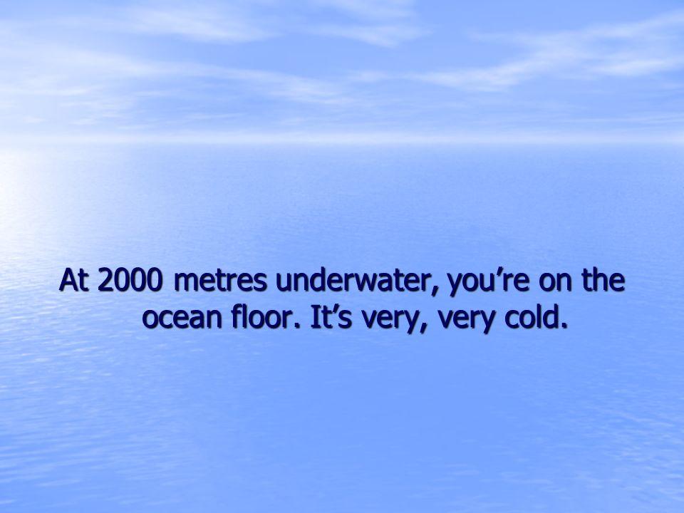 At 2000 metres underwater, you're on the ocean floor