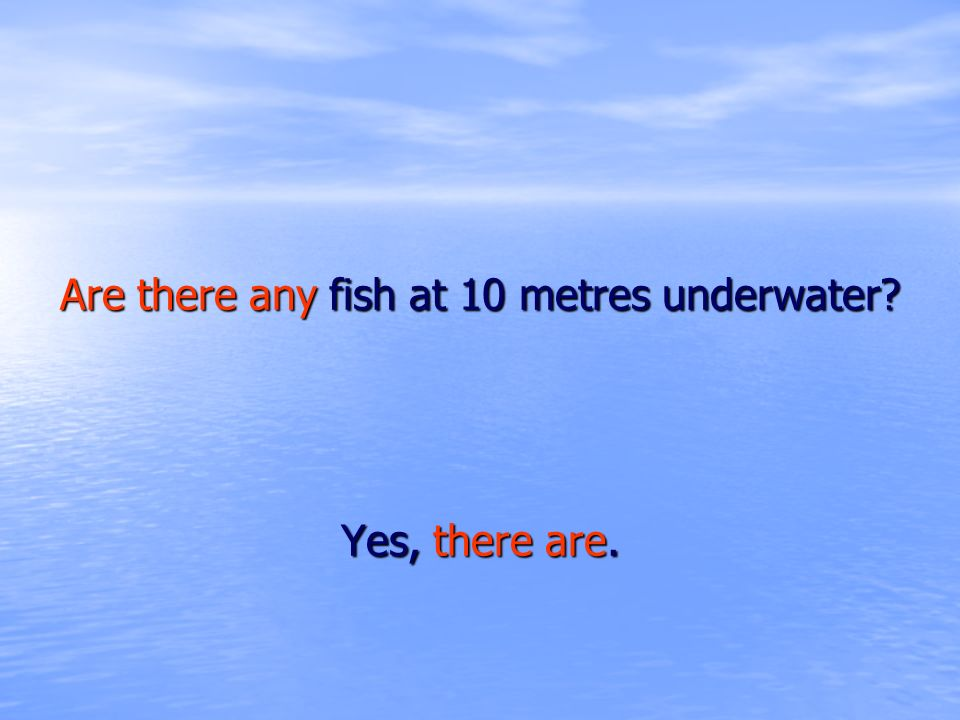 Are there any fish at 10 metres underwater