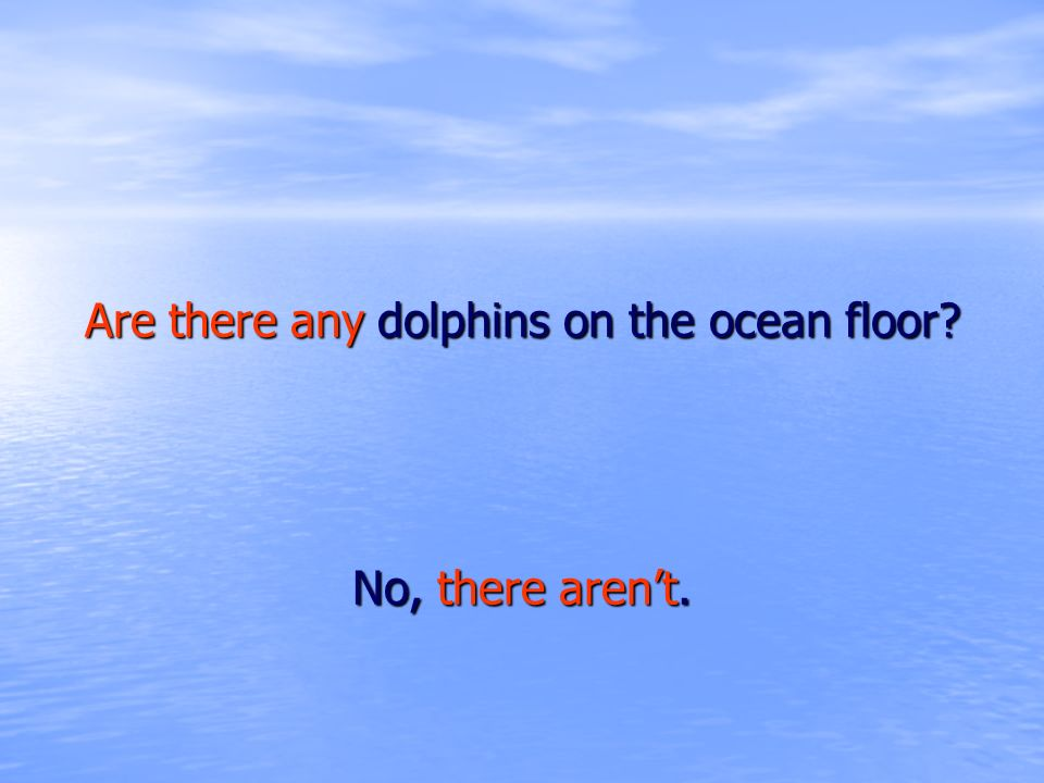 Are there any dolphins on the ocean floor