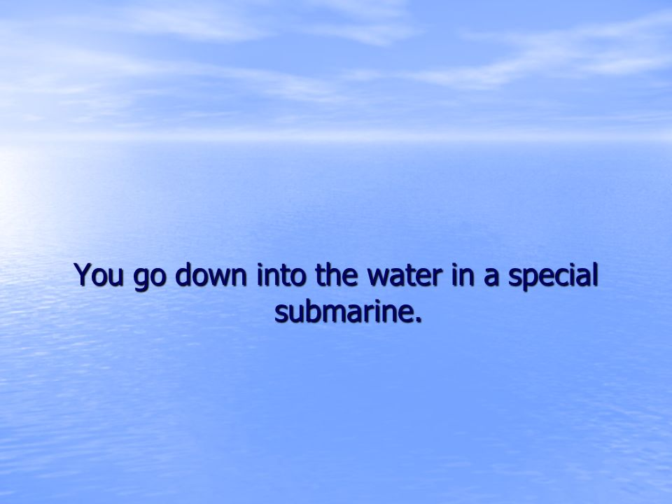You go down into the water in a special submarine.