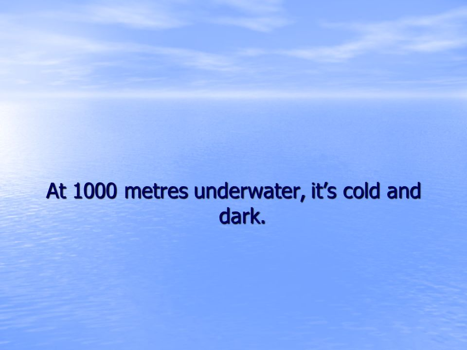 At 1000 metres underwater, it's cold and dark.