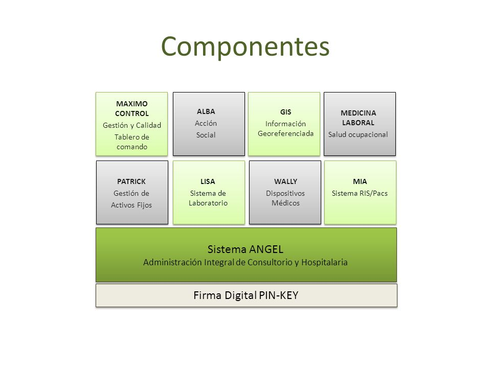 Componentes Sistema ANGEL Firma Digital PIN-KEY