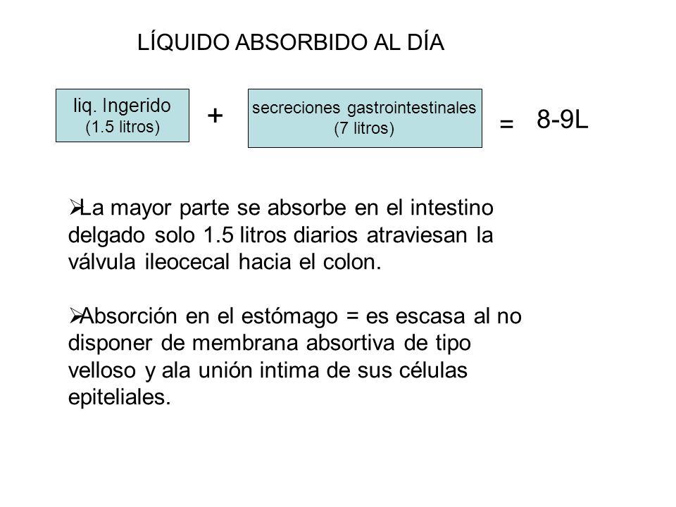 secreciones gastrointestinales