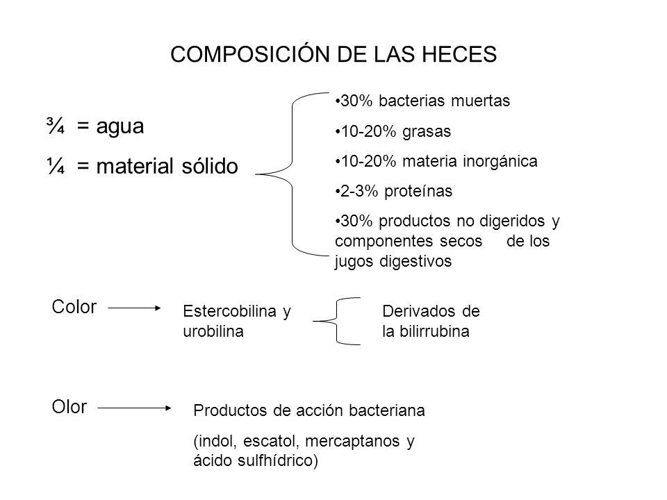 COMPOSICIÓN DE LAS HECES