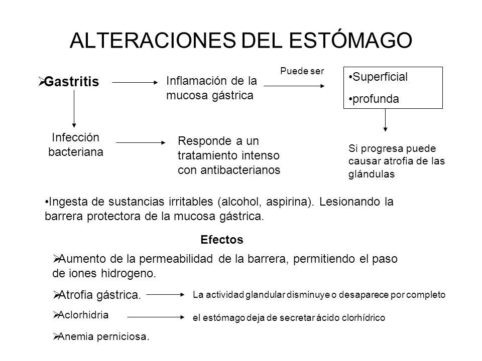 ALTERACIONES DEL ESTÓMAGO