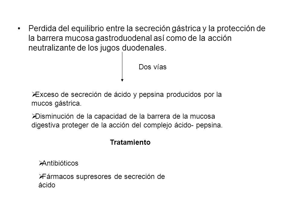 Perdida del equilibrio entre la secreción gástrica y la protección de la barrera mucosa gastroduodenal así como de la acción neutralizante de los jugos duodenales.