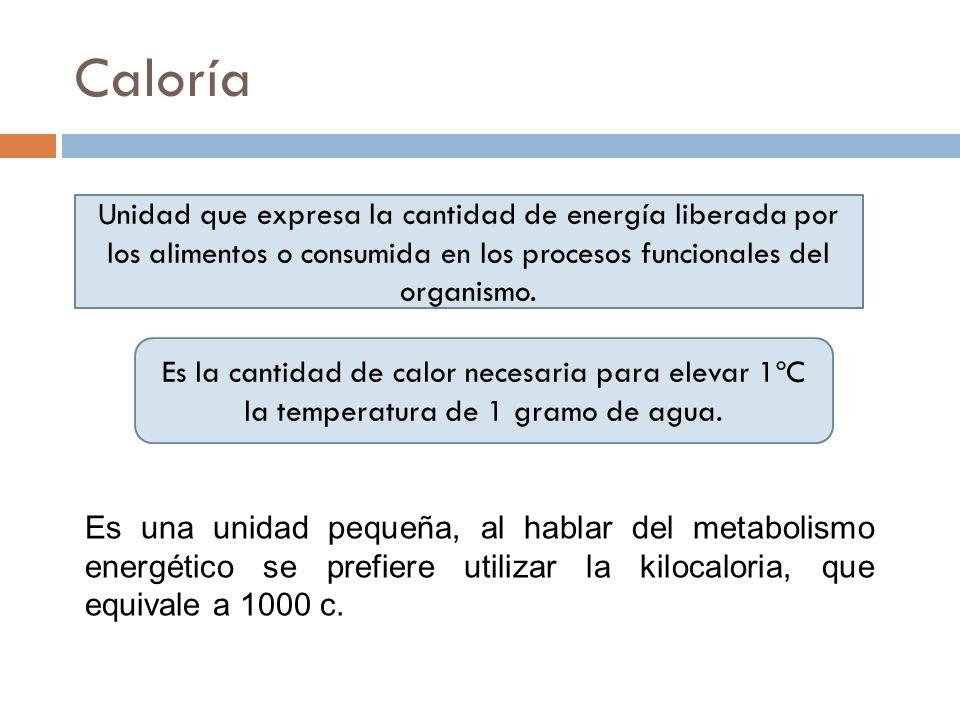 CaloríaUnidad que expresa la cantidad de energía liberada por los alimentos o consumida en los procesos funcionales del organismo.