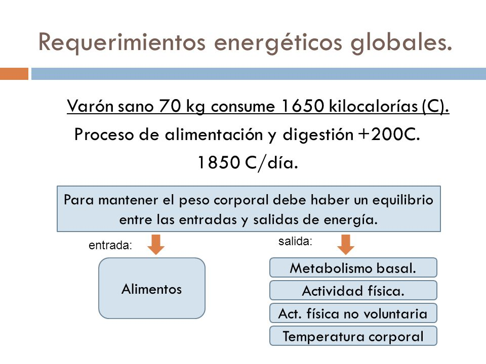 Requerimientos energéticos globales.