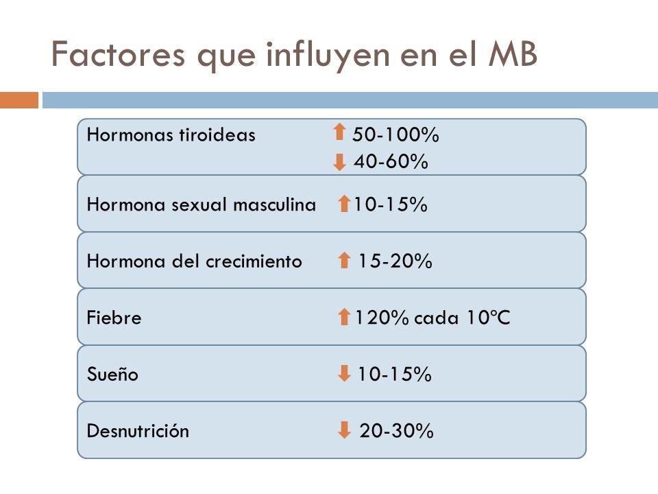 Factores que influyen en el MB