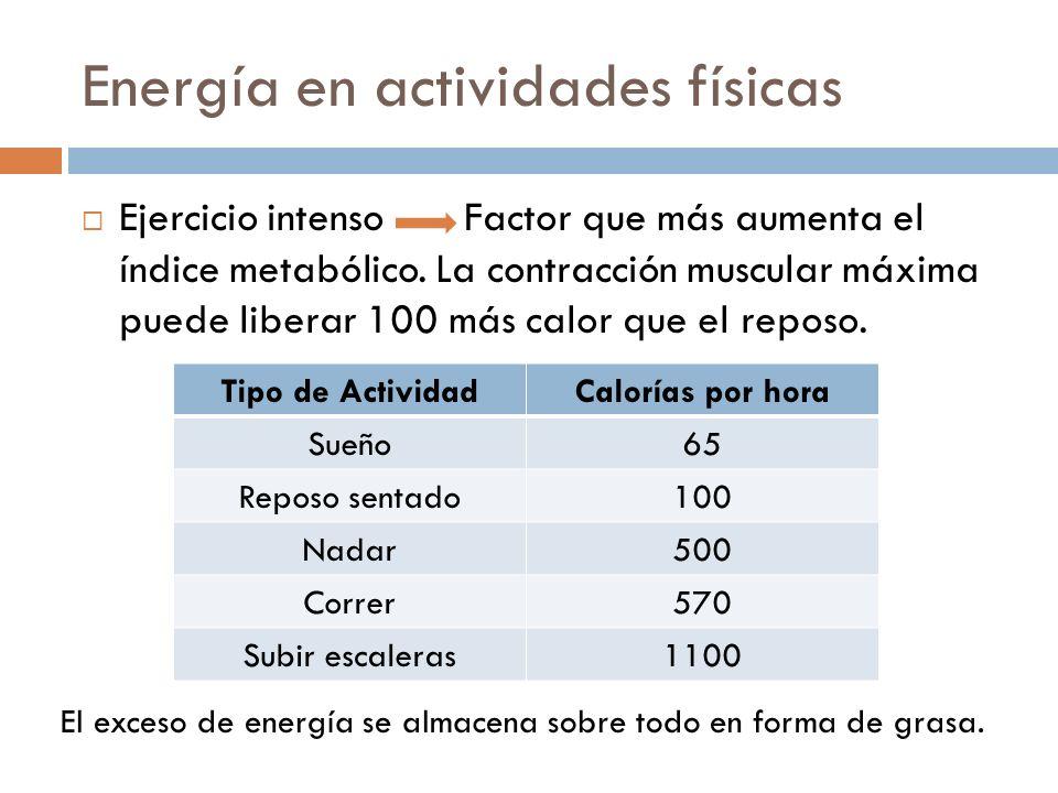 Energía en actividades físicas