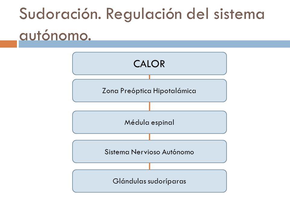 Sudoración. Regulación del sistema autónomo.