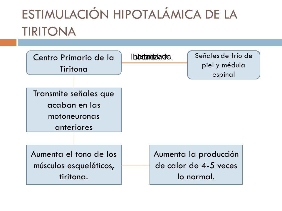 ESTIMULACIÓN HIPOTALÁMICA DE LA TIRITONA