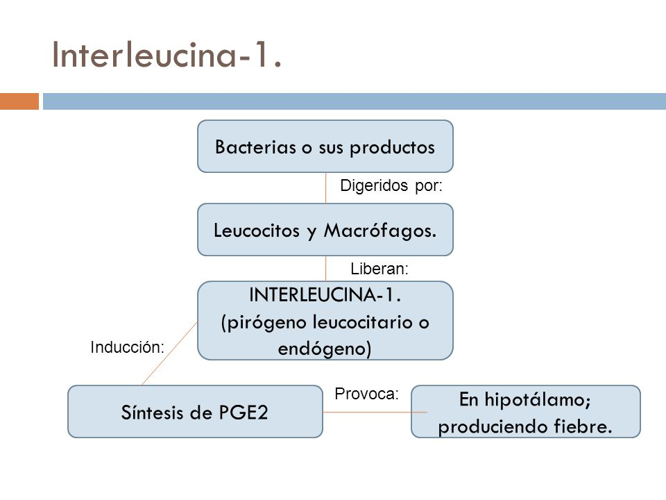 Interleucina-1. Bacterias o sus productos Leucocitos y Macrófagos.