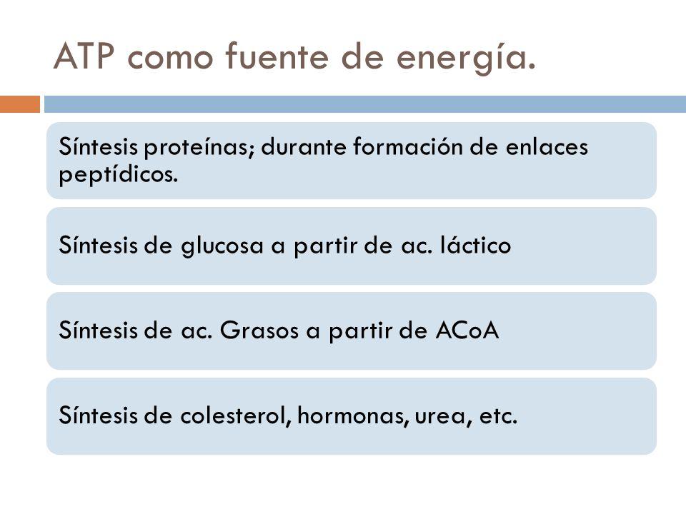 ATP como fuente de energía.