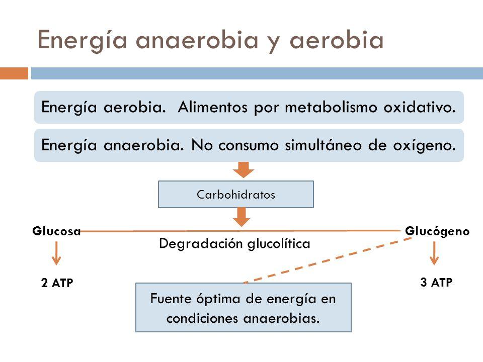 Energía anaerobia y aerobia