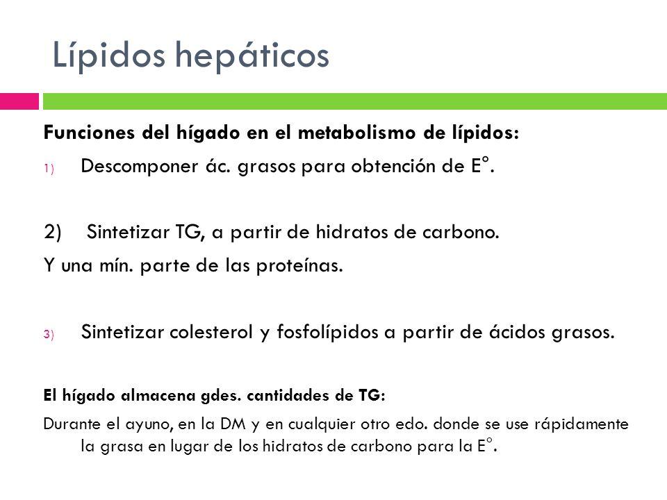 Lípidos hepáticos Funciones del hígado en el metabolismo de lípidos:
