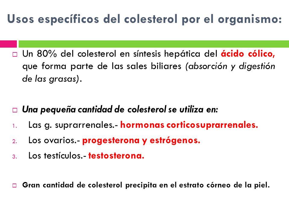 Usos específicos del colesterol por el organismo:
