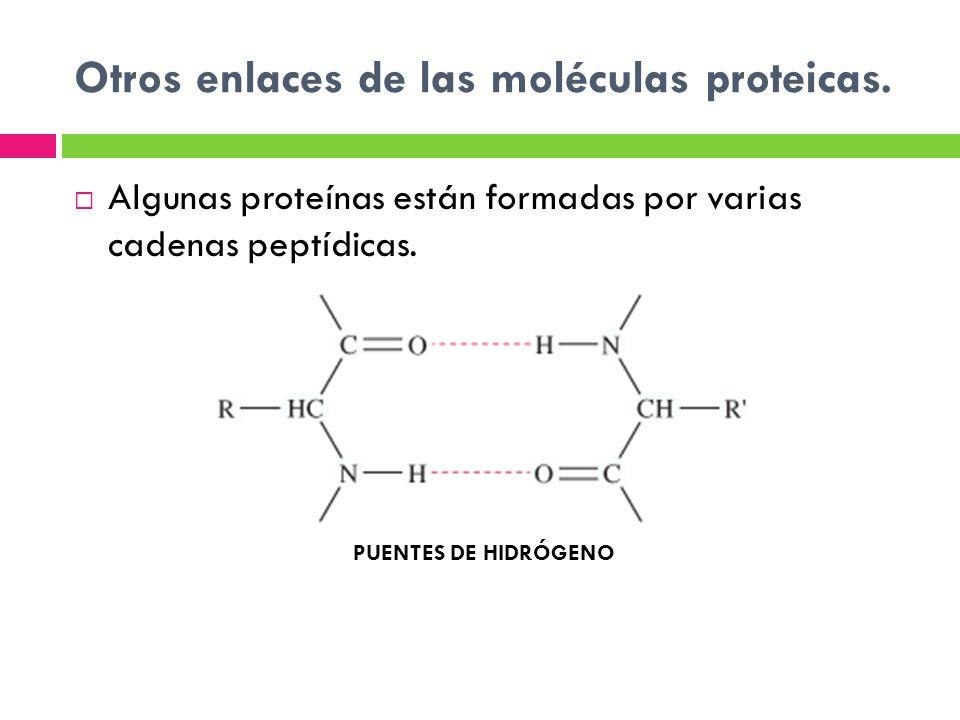 Otros enlaces de las moléculas proteicas.
