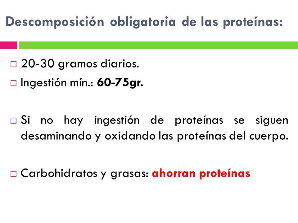 Descomposición obligatoria de las proteínas: