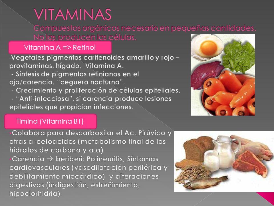 Vitamina A => Retinol