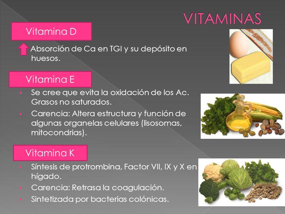 VITAMINAS Vitamina D Vitamina E Vitamina K
