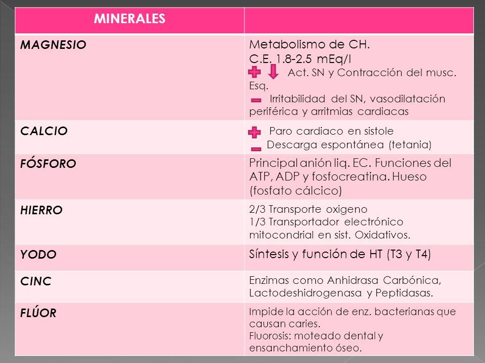 MINERALES. MINERALES MAGNESIO Metabolismo de CH. C.E. 1.8-2.5 mEq/l