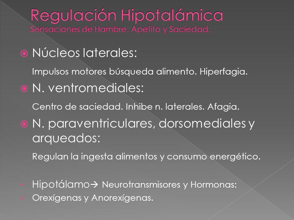 Regulación Hipotalámica Sensaciones de Hambre, Apetito y Saciedad.