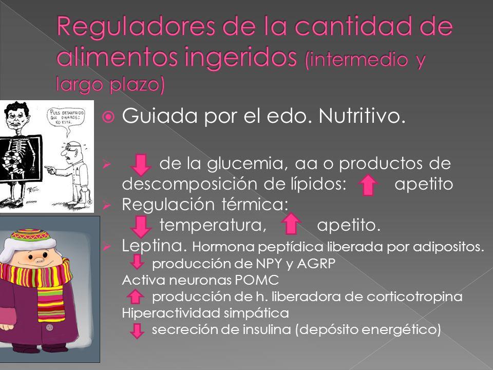 Reguladores de la cantidad de alimentos ingeridos (intermedio y largo plazo)