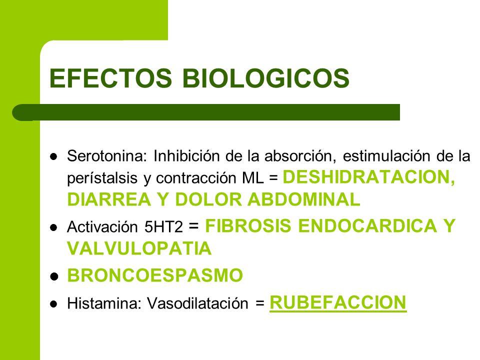 EFECTOS BIOLOGICOS BRONCOESPASMO
