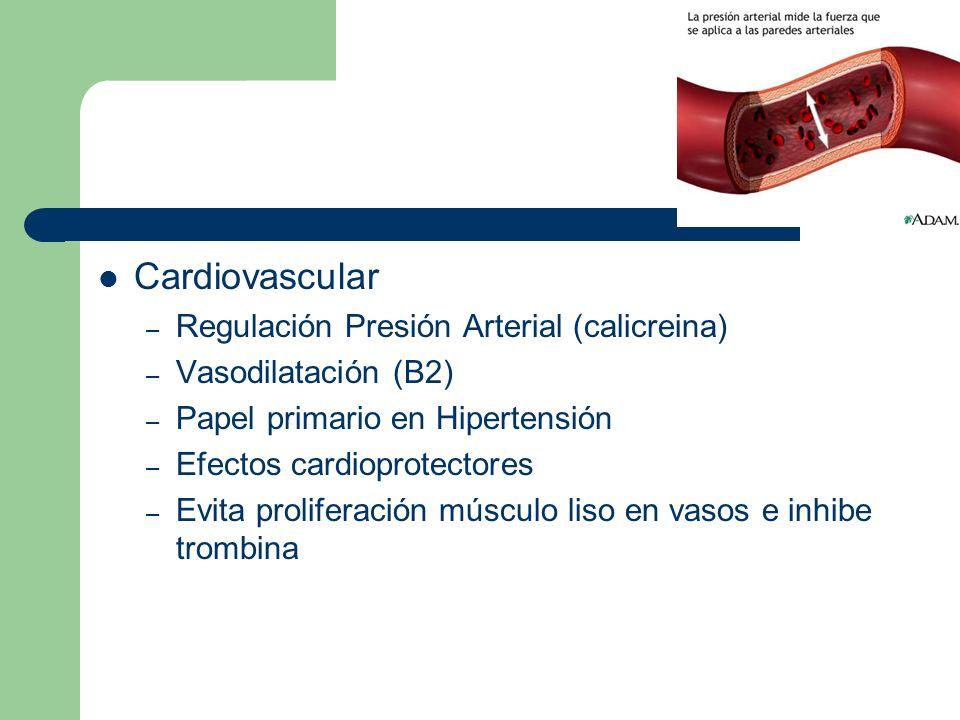 Cardiovascular Regulación Presión Arterial (calicreina)