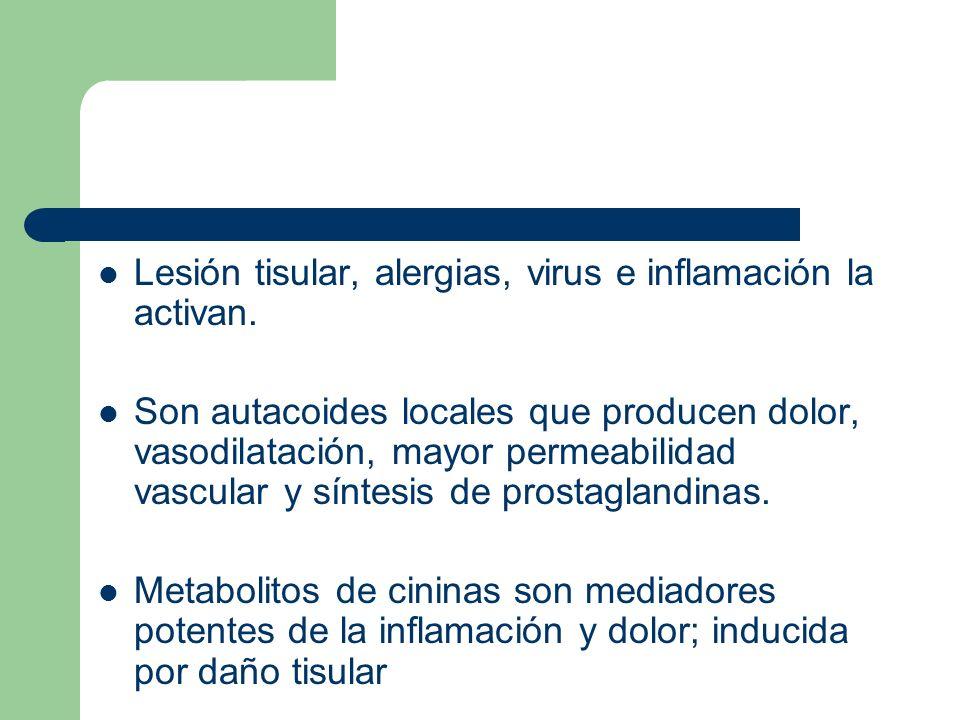 Lesión tisular, alergias, virus e inflamación la activan.