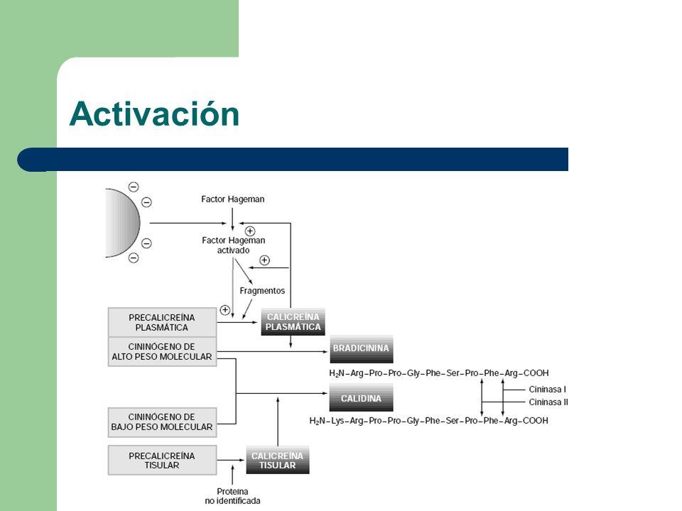 Activación