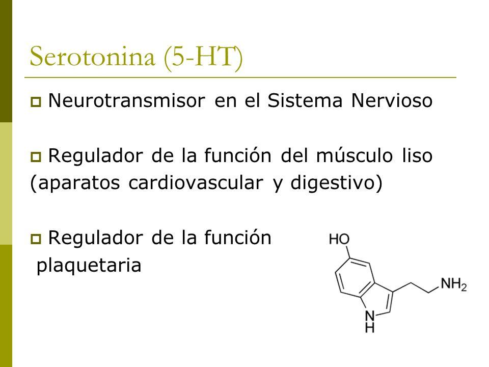 Serotonina (5-HT) Neurotransmisor en el Sistema Nervioso