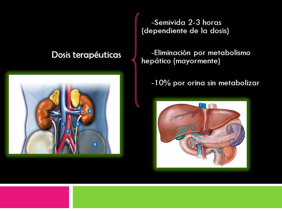 Dosis terapéuticas -Semivida 2-3 horas (dependiente de la dosis)