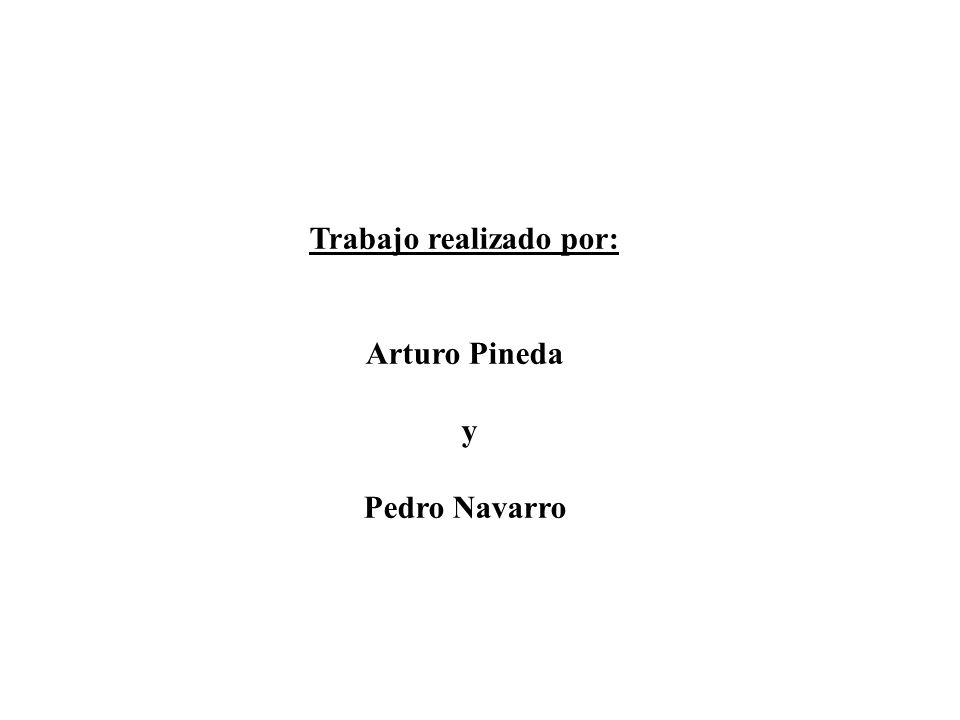 Trabajo realizado por: Arturo Pineda y Pedro Navarro