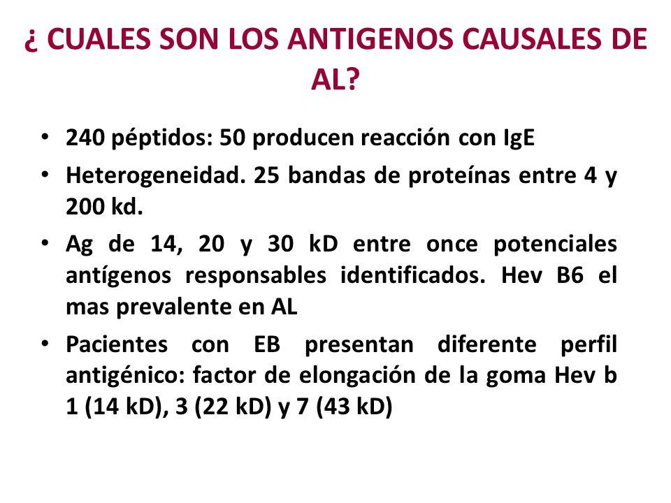¿ CUALES SON LOS ANTIGENOS CAUSALES DE AL